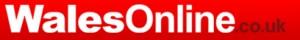 media_wales_online_logo